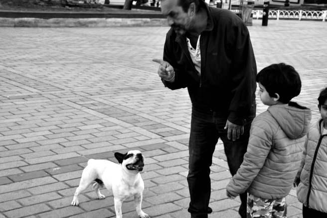 Konuşan köpek